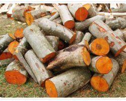 Банные дрова