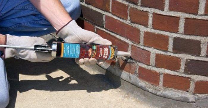 Как убрать плесень в углах в квартире