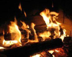 Определение удельной теплоты сгорания дров