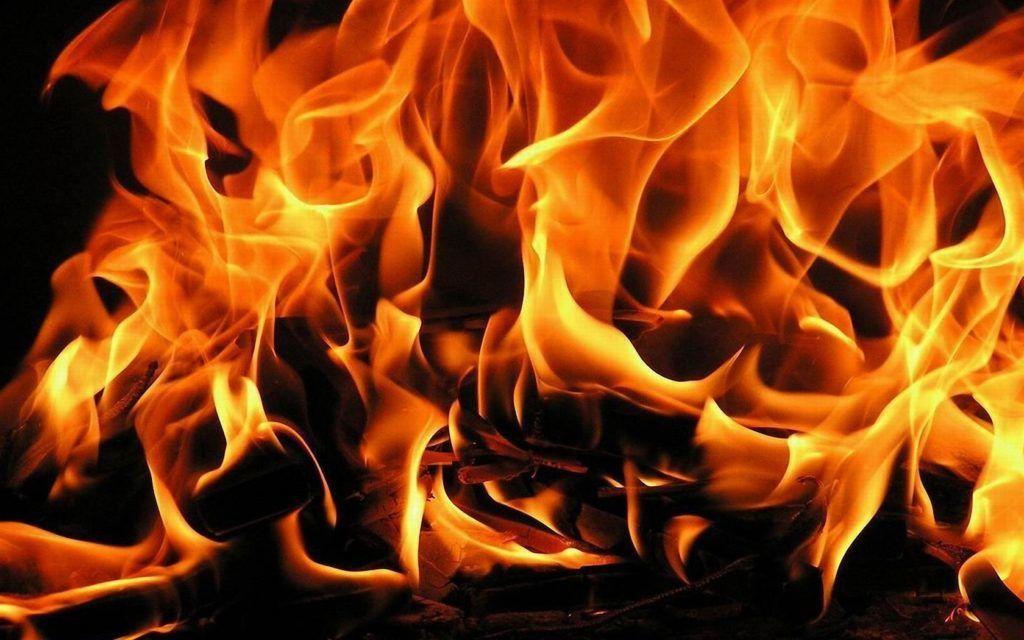 Яркое пламя и минимум дыма бывает лишь от сухих дров