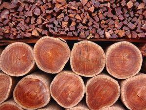дрова из красного дерева